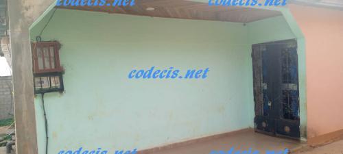 codecis
